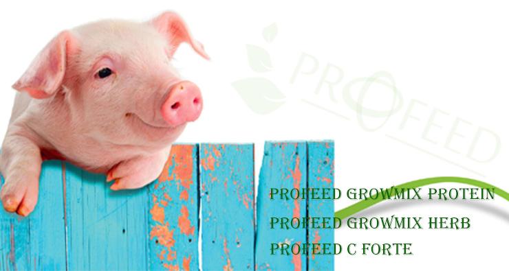 profeed_herbs